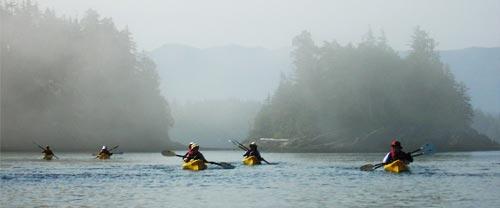 mothership kayaking watch orcas