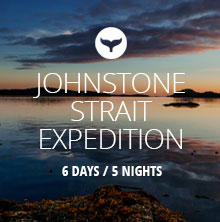 nav-bc-johnstone-strait-expedition