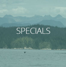 Kayaking Trip Specials