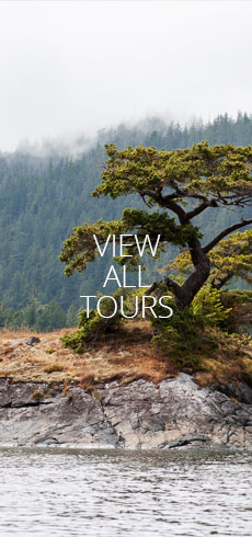 nav-tall-View-all-tours