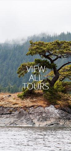 nav-tall-View-all-tours