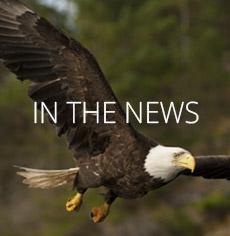 nav-rest-in-the-news