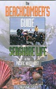beach combers guide
