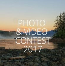 Wildlife & Tour Contest, 2017