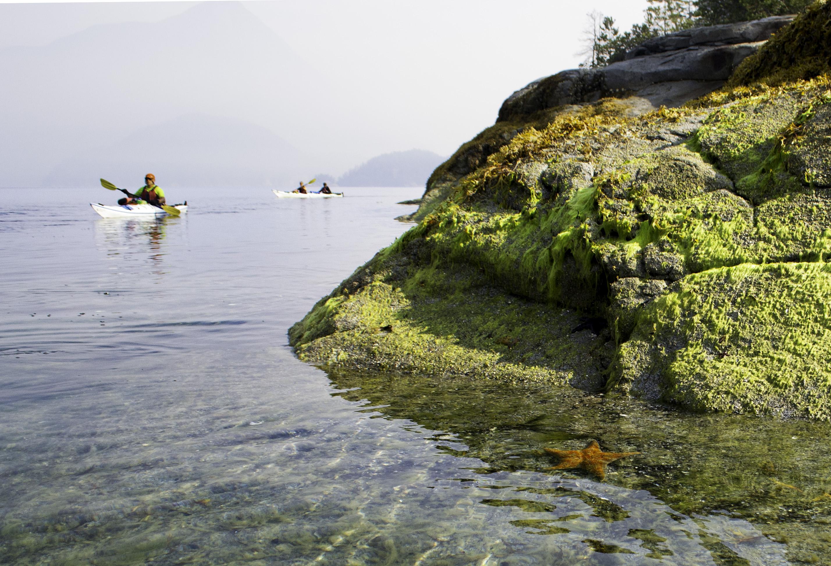 Desolation Sound kayakers