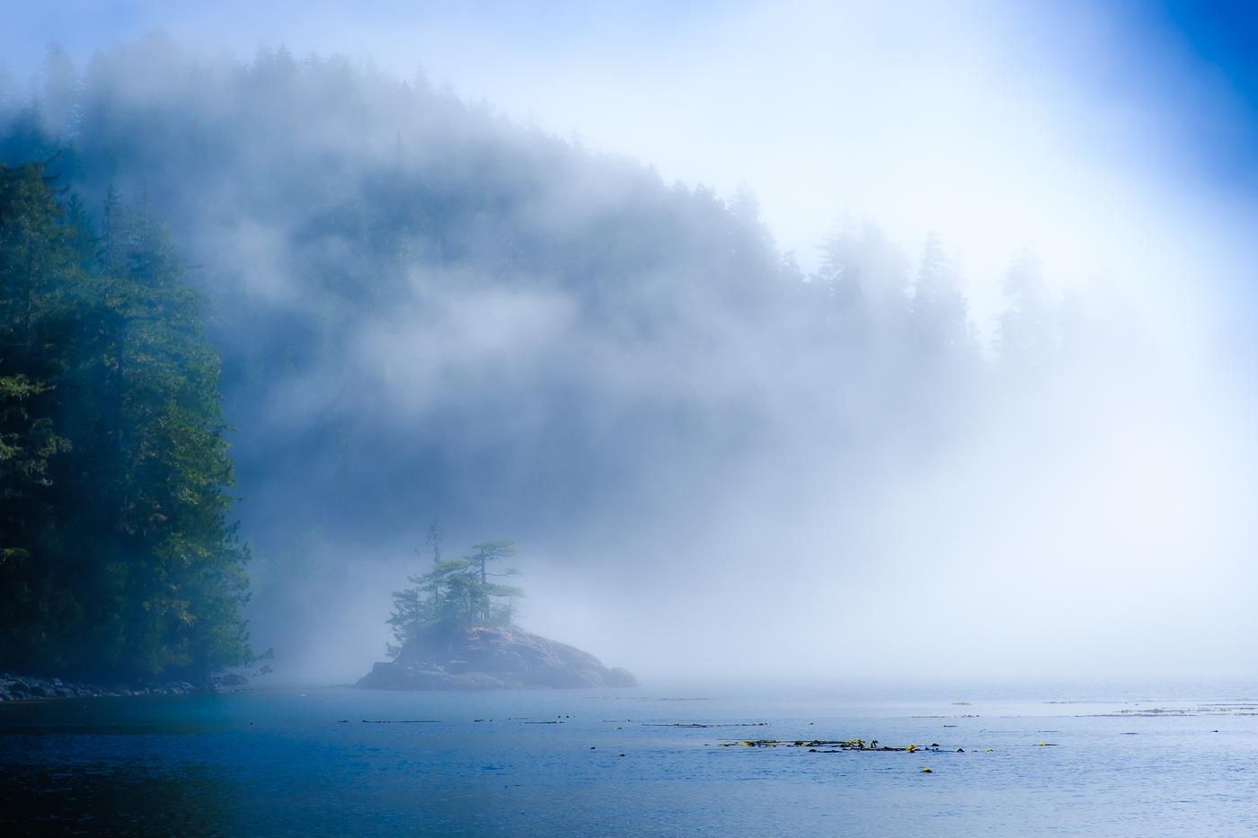 BC coastal island in fog