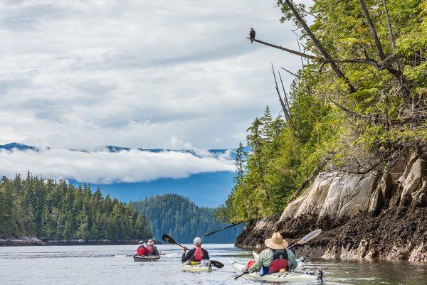 Kayaking Broughton Archipelago