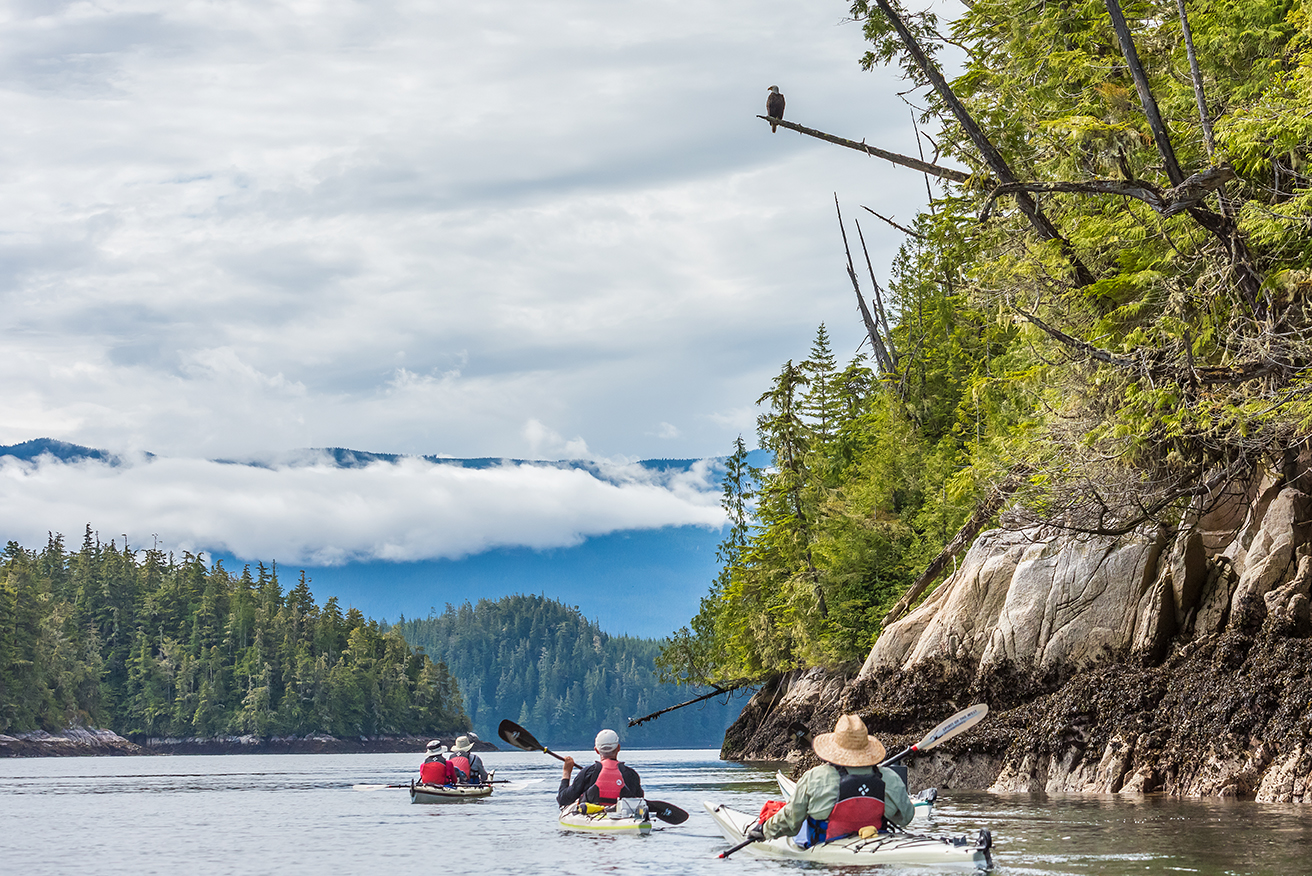 Kayaking Broughton Archipelago