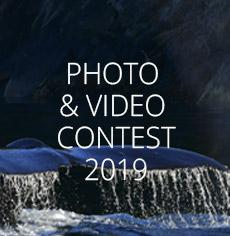 nav-contest-2019