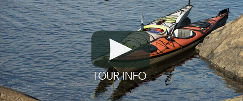 Orca Kayaking Vancouver Island | Spirit of the West Adventures